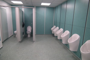 Toilet refurbishment example